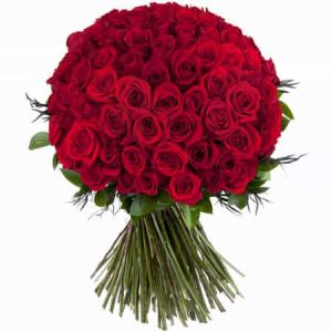 100 RED ROSES| Dottedi