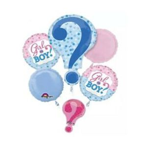 "Scene Setter : ""Blue Or Pink - What Do you Think?"" Balloon Bouquet"