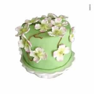 Flower Power Cake| Dottedi