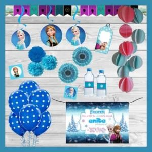 Frozen Themed Party In A Box| Dottedi