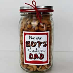 Nuts about you jar| Dottedi